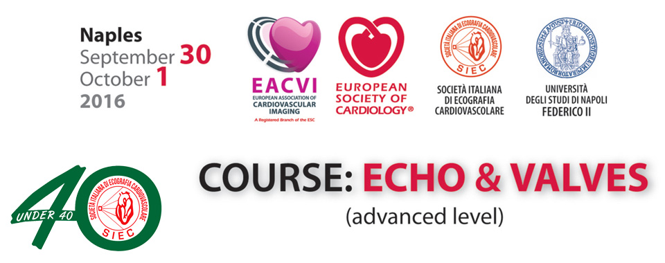 COURSE: ECHO & VALVES (advanced level)